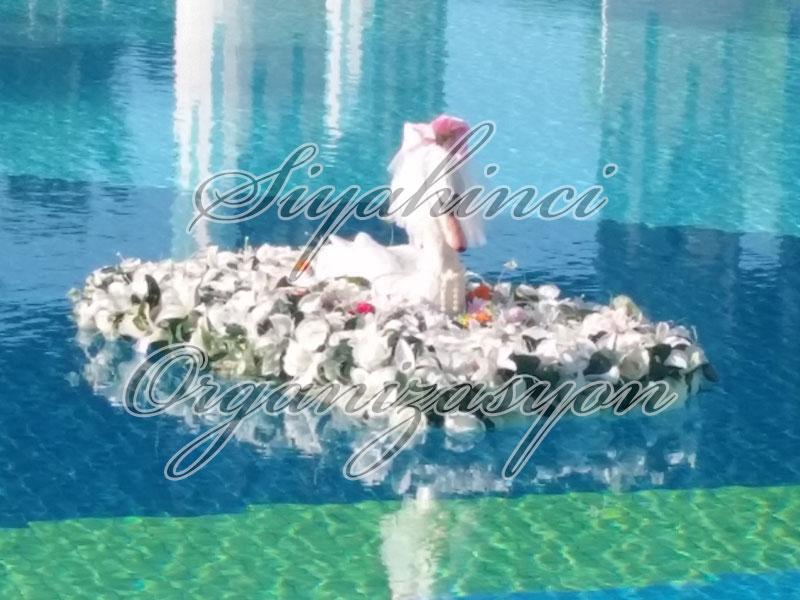 Havuz Çiçeği - Kuğu Model